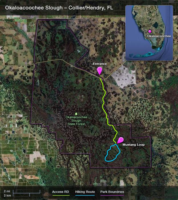 Okaloacoochee Hiking Map