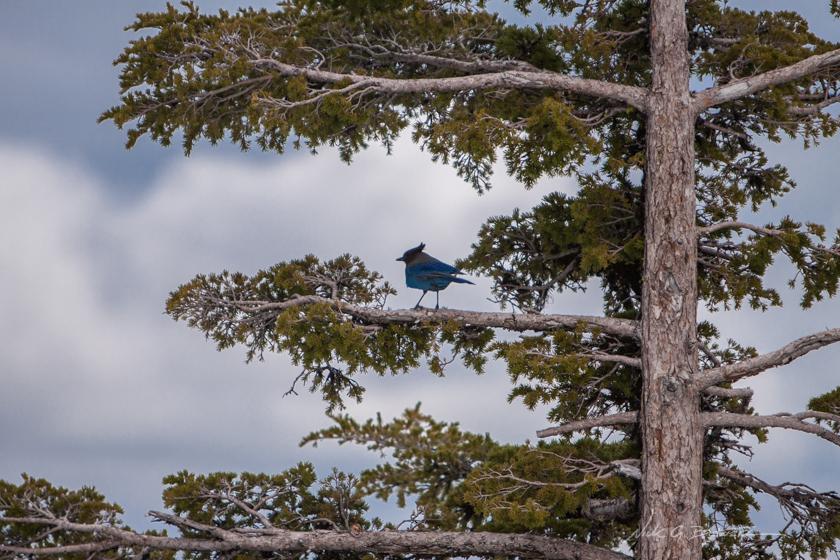 Visiting Crater Lake National Park, Oregon