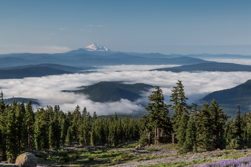 Hiking Mt. Hood, Paradise Park, Oregon