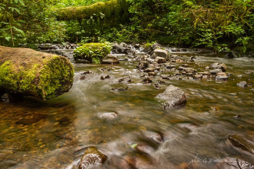 Munson Creek Falls