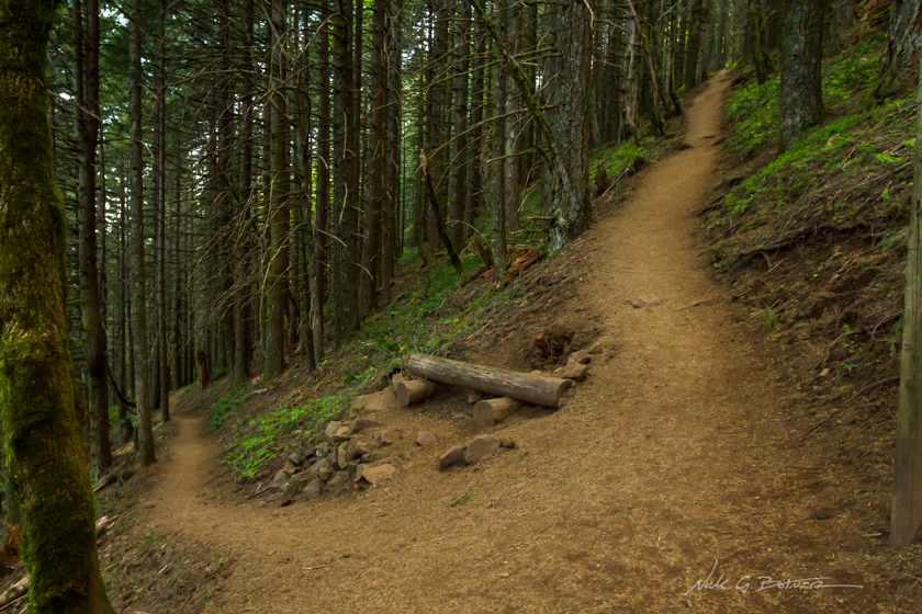 Hiking Dog Mountain along the Columbia River Gorge in Washington