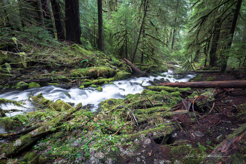 Sol Duc Falls and Lake Deer in the Olympic National Park, Washington