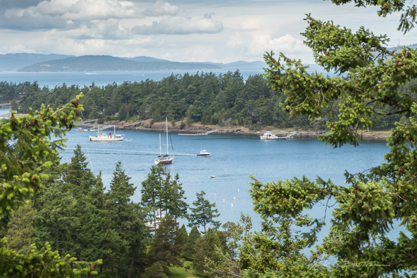 Springtime on San Juan Island, Washington