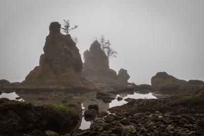 Oregon Coast – Ghostly Rocks of Crab Harbor
