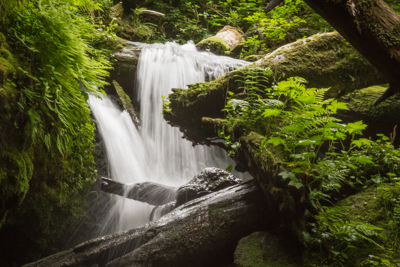 Munson Creek Falls – Tillamook, Oregon