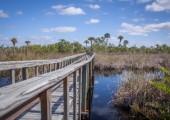 Briggs-Nature-Center
