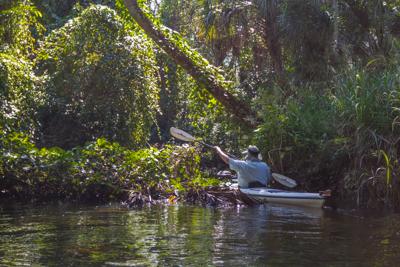Kayaking Floirda – Estero River, Estero